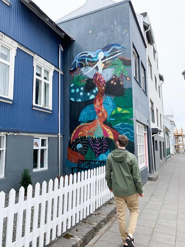 Raykjavik, Iceland art
