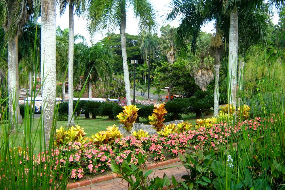Santo_Domingo_Botanical_Gardens.jpg