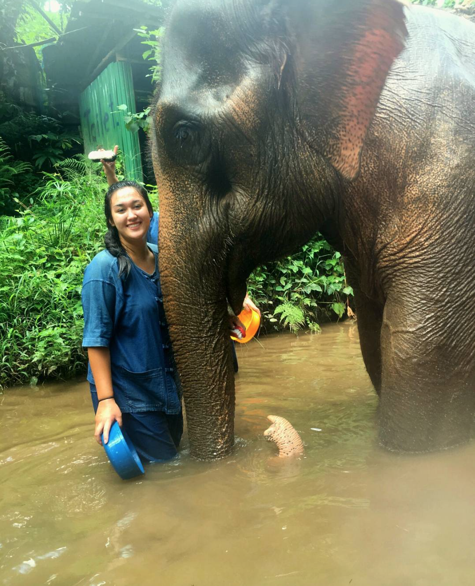 Teach English in Thailand with ILP