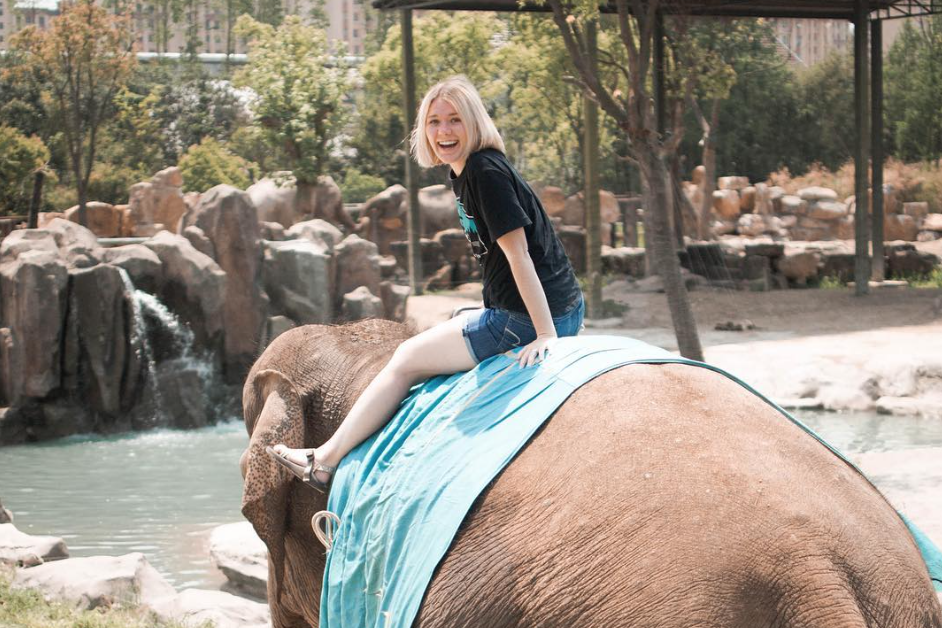 Ride elephants in Shanghai, China