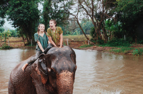 Ride elephants with ILP