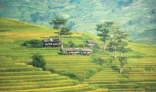 ILP Adventure - Vietnam