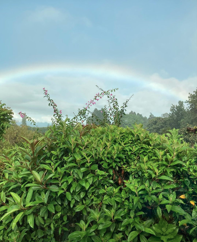 ILP Adventure in Costa Rica