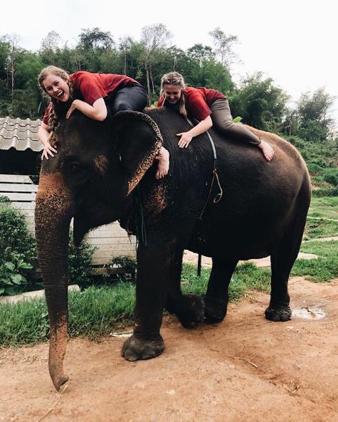 ride elephants in thailand