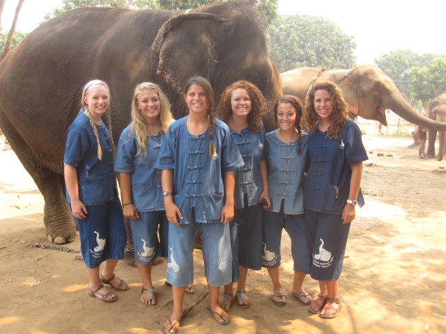 elephants-3.jpg