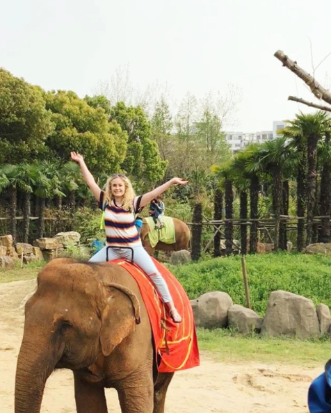 ride elephants in china