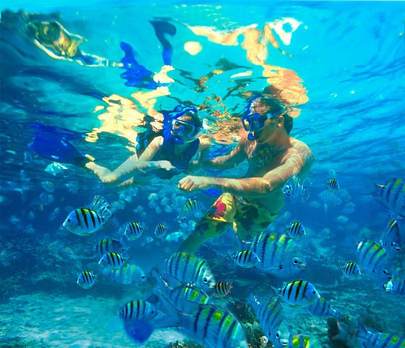 mexico snorkel.jpg