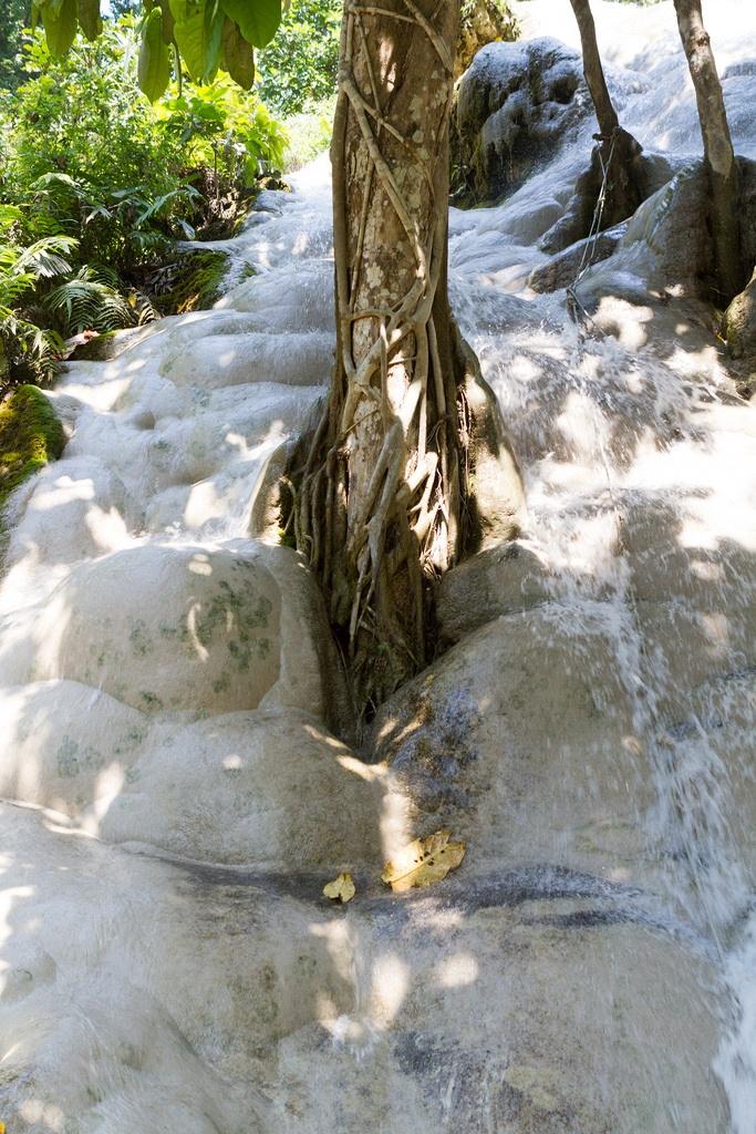 sticky waterfalls.jpg